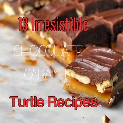 Turtle_Recipes.jpg